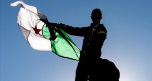Algerian regional diplomacy emerging toward the Mali crisis